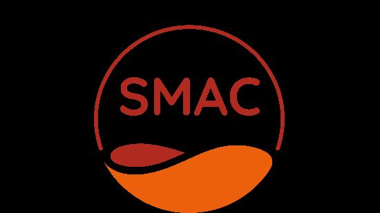 Smartchem Logo